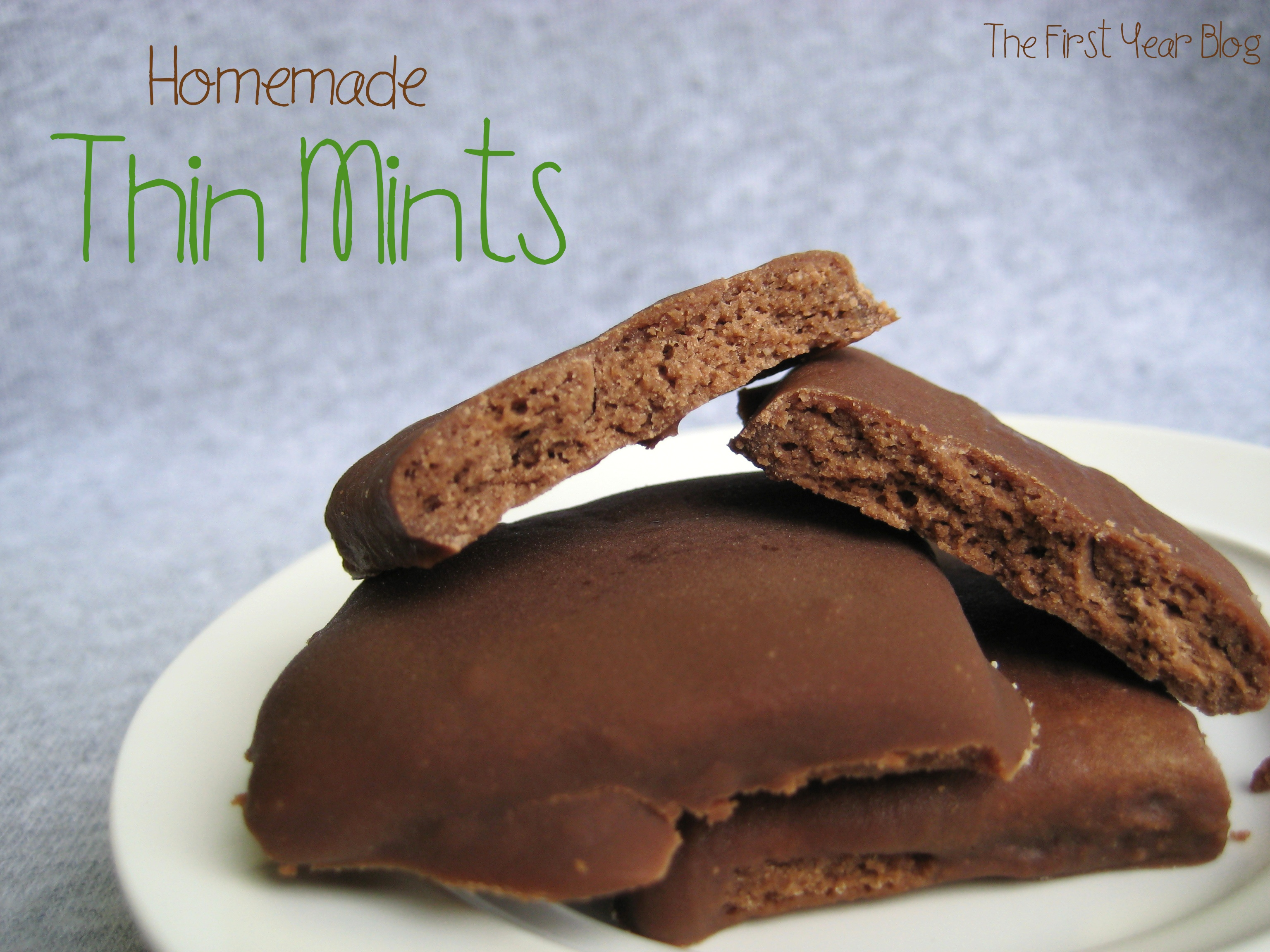 Thin Mints - The First Year Blog #HomemadeThinMints